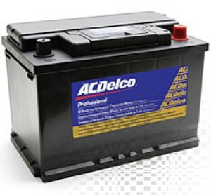ACDelco_48-6yr_48hpg1